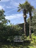 Rendez Vous aux Jardins 2018 -Visite libre du jardin insolite