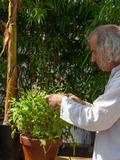 Rendez Vous aux Jardins 2018 -Jardins à écouter : musique des plantes par Jean Thoby