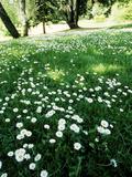 Rendez Vous aux Jardins 2018 -Visite flash