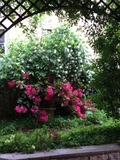 Rendez Vous aux Jardins 2018 -Jardins particuliers de l'hôtel de Samerey à Dijon
