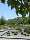 Rendez Vous aux Jardins 2018 -Jeu de piste sur les plantes européennes