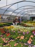 Rendez Vous aux Jardins 2018 -Dégustation dans les serres municipales