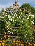Rendez Vous aux Jardins 2018 -L'Europe s'invite au jardin d'Alcinoos
