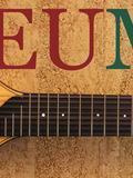Journées du patrimoine 2016 -L'instrumentarium et le patrimoine sonore insulaire, Pigna un village dédié à la musique et à la voix.