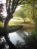 Journées du patrimoine 2016 -La biodiversité de la Hubonière (Sautron)