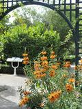 Rendez Vous aux Jardins 2018 -La découverte du jardin botanique