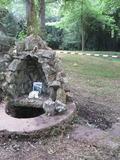 Journées du patrimoine 2016 -La fontaine Saint-Symphorien et son lavoir à Treillières (44 119)