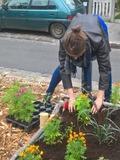 Rendez Vous aux Jardins 2018 -La nature sans fioriture : plantations au potager Paty