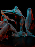 Nuit des musées 2018 -La poétique de l'éphémère