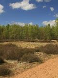 Journées du patrimoine 2016 -La Réserve Naturelle Nationale de La Truchère-Ratenelle s'offre à vous (71) !