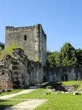 Journées du patrimoine 2016 -Le château Thomas II et son marais protégé