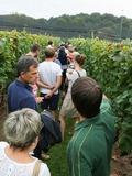 Journées du patrimoine 2016 -Le coteau de Braden, de la vigne au vin