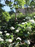 Journées du patrimoine 2016 -Jardin des Oules