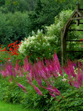 Rendez Vous aux Jardins 2018 -Le Jardin des Rouges Vis: visite libre d'un jardin privé de 2 ha, labellisé