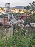 Rendez Vous aux Jardins 2018 -Visite commentée du jardin du carbonifère.
