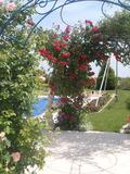 Rendez Vous aux Jardins 2018 -Découvrez le jardin Les Feuillantines en visite libre ou commentée