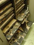 Journées du patrimoine 2016 -Visite commentée des collections de paléontologie
