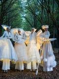 Journées du patrimoine 2016 -Les Échassiers blancs lumineux