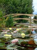 Journées du patrimoine 2016 -Les Jardins Aquatiques