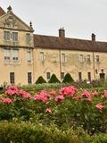 Rendez Vous aux Jardins 2018 -Visite commentée des jardins.