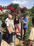 Rendez Vous aux Jardins 2018 -Les jardins de Villeneuve nous racontent la ville, parcours commenté sur la colline de Villeneuve-Saint-Georges
