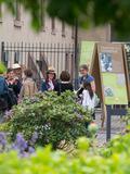 Rendez Vous aux Jardins 2018 -Les pépinières Baumann de Bollwiller au coeur de l'Europe horticole.