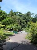 Rendez Vous aux Jardins 2018 -Visite guidée : Les plantes à travers l'Europe