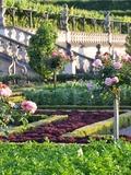 Rendez Vous aux Jardins 2018 -Profitez du weekend pour (re)découvrir les jardins à la saison des roses