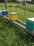 Rendez Vous aux Jardins 2018 -« Les ruches du Vallon de Ration »