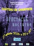 Journées du patrimoine 2016 -Lumière sur le château hanté