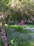 Rendez Vous aux Jardins 2018 -Visite guidée ou déambulation dans le parc du Manoir du Vaumadeuc