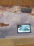 Nuit des musées 2018 -Médiation numérique et explorations virtuelles