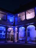 Nuit des musées 2018 -Mise en lumière du musée et du jardin