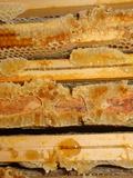 Journées du patrimoine 2016 -Musée des outils d'hier et rucher du père Gaillot