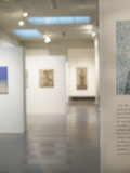 Journées du patrimoine 2016 -Musée Estrine