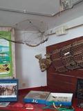 Journées du patrimoine 2016 -Musée La Maison de la Pêche