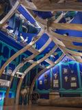 Nuit des musées 2018 -Visite de l'espace muséographique et du cabinet de curiosités