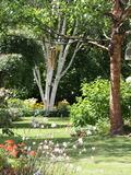 Rendez Vous aux Jardins 2018 -Visite libre du jardin