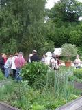 Rendez Vous aux Jardins 2018 -Visite du jardin d'inspiration gallo-romaine d'Epomanduodurum/Mandeure