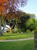 Rendez Vous aux Jardins 2018 -Ouverture au Public du jardin de la Cheneraie