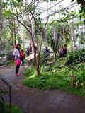 Journées du patrimoine 2016 -Ouverture des serres tropicales