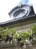 Rendez Vous aux Jardins 2018 -Parc de l'abbaye - fontaines et impromptu musical : l'Europe des jardins avec Victor Hugo -
