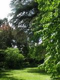 Rendez Vous aux Jardins 2018 -Visite libre « Passez au vert et au naturel ».
