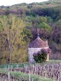 Journées du patrimoine 2016 -Pavillon de vignes de Macheron à Lugny