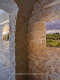 Journées du patrimoine 2016 - Paysages du Val de Saône et de Dombes sous le regard de Philippe Hervouet, photographe
