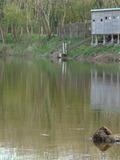 Journées du patrimoine 2016 -Photographies animalières à Neuvy sur Loire