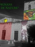 Journées du patrimoine 2016 -Pignans Coeur de Nature