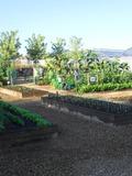 Rendez Vous aux Jardins 2018 -Porte ouverte du Centre Technique Horticole. Ville de Nevers