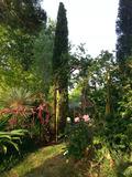 Rendez Vous aux Jardins 2018 -Présentation du jardin par le propriétaire