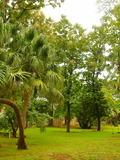 Journées du patrimoine 2016 -Préserver son patrimoine vert